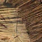קבלן עץ
